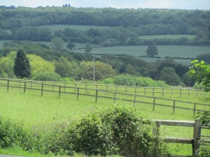 """This """"green and pleasant"""" picture of the Kentish countryside was taken from Kemsing Library, Sevenoaks on Wednesday.  No ocean views but, still, what a lovely view"""